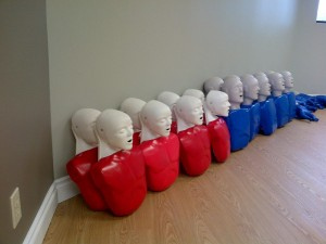 CPR/AED training mannequins